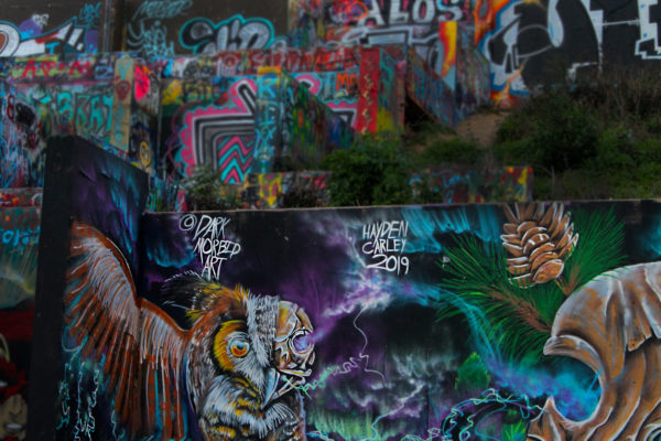 last mural owl
